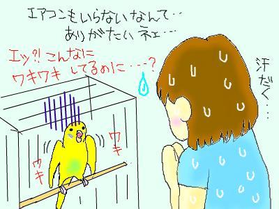 snap_hamukii_201074234216.jpg