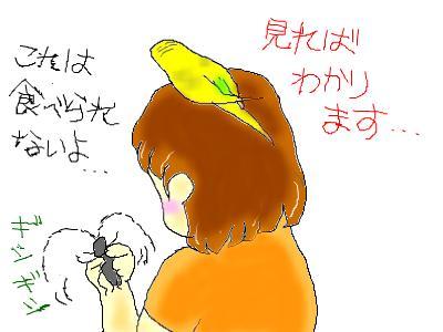snap_hamukii_201075155848.jpg