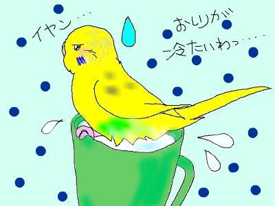 snap_hamukii_201080145713.jpg