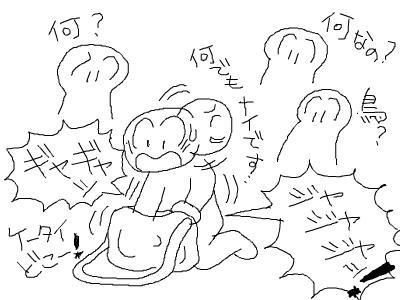 snap_hamukii_201094102822.jpg