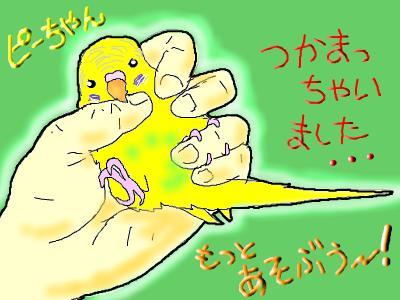 snap_hamukii_201094145147.jpg