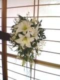 blog20070224.jpg