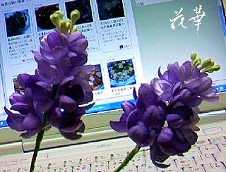 ハンドメイドのリラ(ライラック)のお花(布花・染め花)