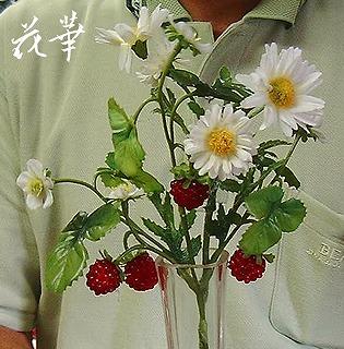 マーガレットと野いちごがピッタリのマサさん(アートフラワー・上質造花)