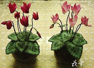 ハンドメイド・2色のシクラメンの鉢植えが完成(布花・染め花・アートフラワー)