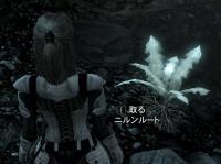 SkyrimSS_02.jpg