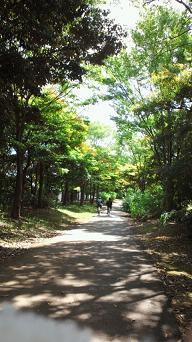 okinawa 2112-1