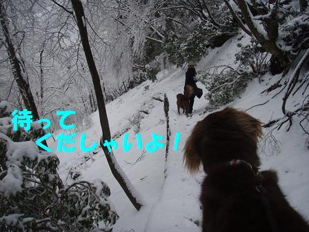 14FEB10 snow covered OYAMA 083a