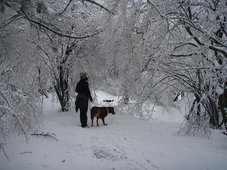 14FEB10 snow covered OYAMA 145a