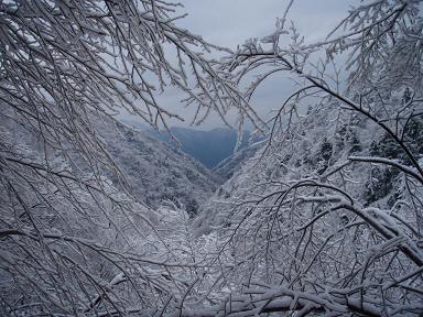 14FEB10 snow covered OYAMA 106