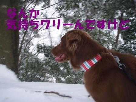 14FEB10 snow covered OYAMA 108a