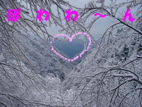 14FEB10 snow covered OYAMA 107aa
