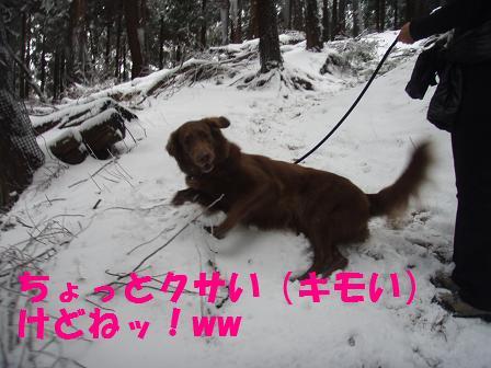 14FEB10 snow covered OYAMA 060
