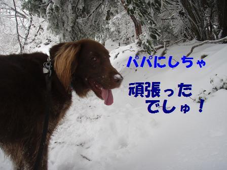 14FEB10 snow covered OYAMA 119a