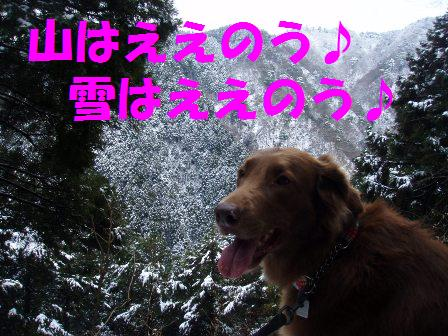 14FEB10 snow covered OYAMA 036