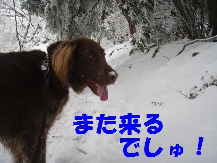 14FEB10 snow covered OYAMA 119