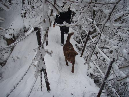 14FEB10 snow covered OYAMA 130