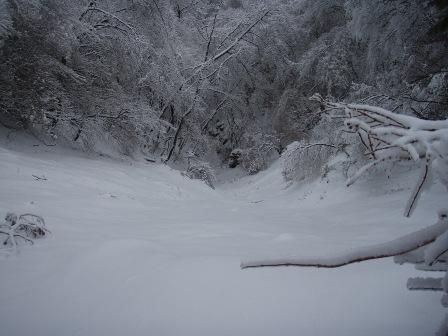 14FEB10 snow covered OYAMA 139