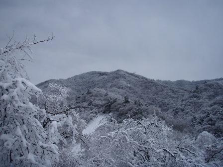 14FEB10 snow covered OYAMA 157