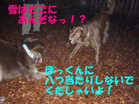 27FEB10-01MAR10 KARUIZAWA 117