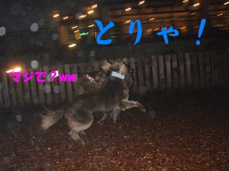 コピー ~ 27FEB10-01MAR10 KARUIZAWA 119