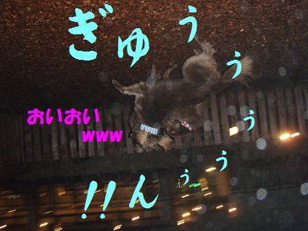 コピー (2) ~ 27FEB10-01MAR10 KARUIZAWA 119