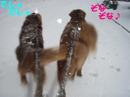 27FEB10-01MAR10 KARUIZAWA 130