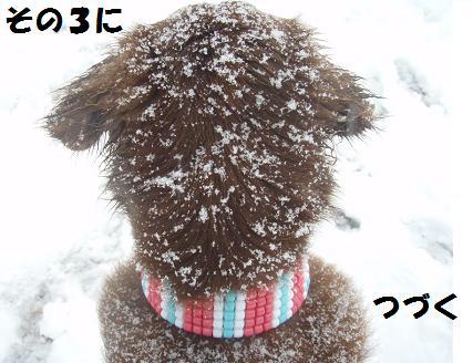27FEB10-01MAR10 KARUIZAWA 157