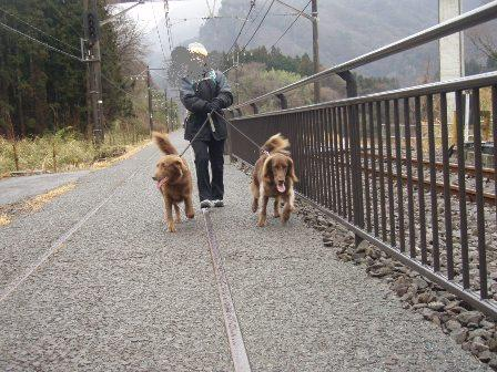 27FEB10-01MAR10 KARUIZAWA 255