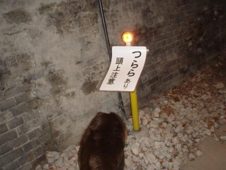 27FEB10-01MAR10 KARUIZAWA 308