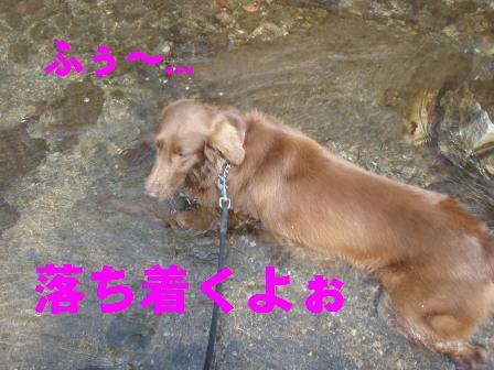 27FEB10-01MAR10 KARUIZAWA 401