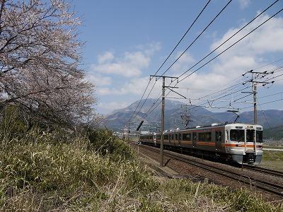 s-P1000767.jpg