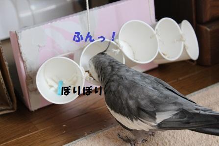 食べ始めた~