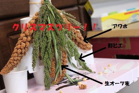 手作り感バリバリのツリー(笑