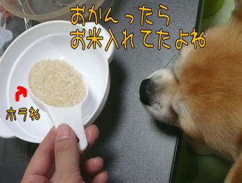 komusan_0410_006