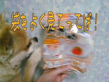 komusan_0410_008