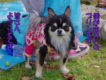 komusan_0422_003