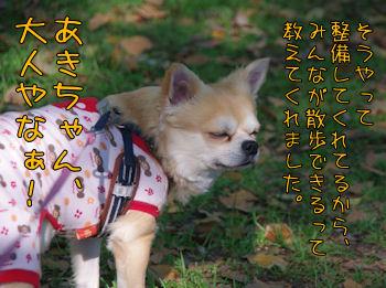 komusan_0503_009