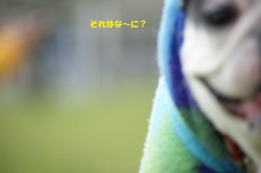 マルちゃん4