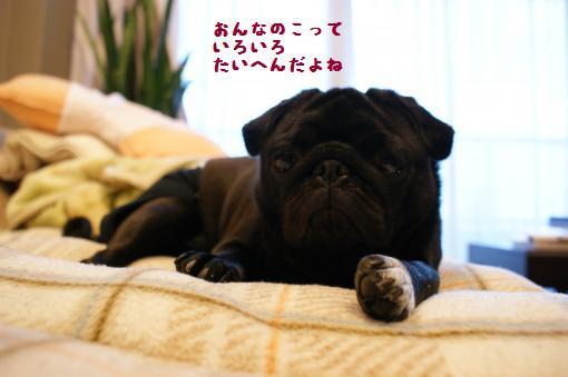 眠いんです4