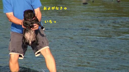 20100911065805(9)_convert_20100914223123.jpg