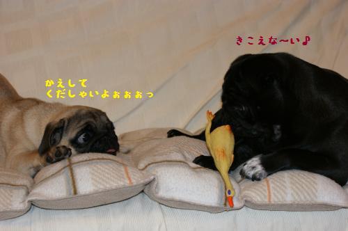2_20110809232020.jpg