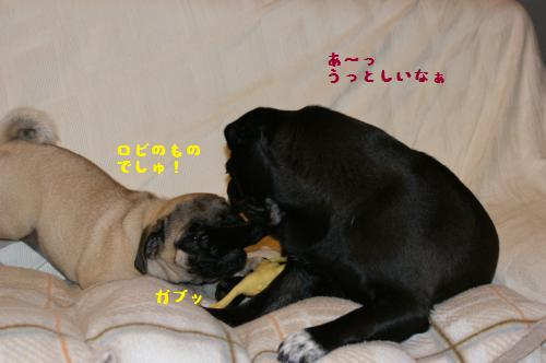 3_20110809232019.jpg