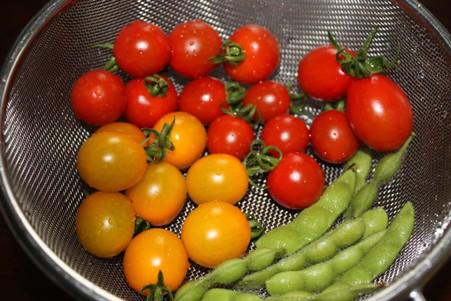 トマトとえだまめ0706
