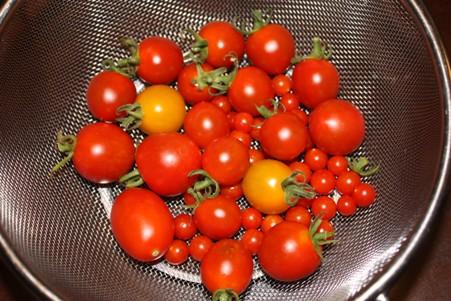 収穫0711