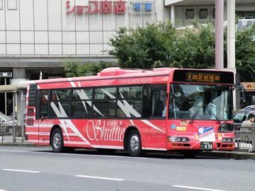 2010080810.jpg