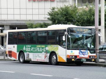 2010080811.jpg