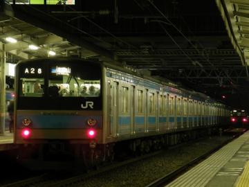 2010120113.jpg