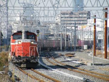 2010121904.jpg