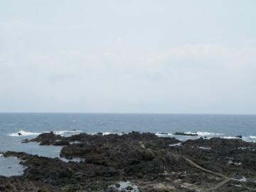 2011081939.jpg